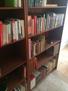 Bogreol fuld af gode bøger